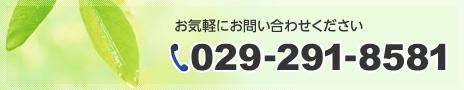 029-291-8581